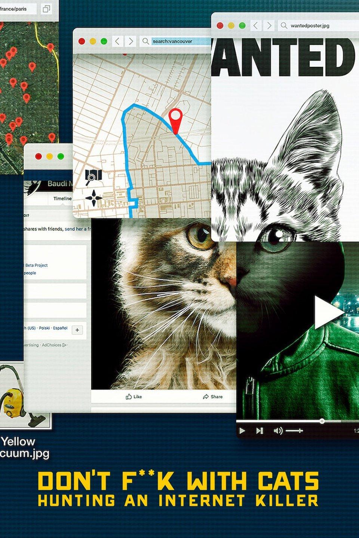 Video Pembunuhan Kucing Yang Diupload ke Internet