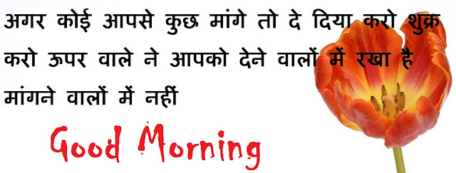 beautiful religious good morning quotes in hindi with flowers