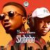 Skiibii Feat. Dtunes - Skibobo (Afro Naija)
