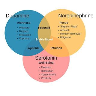 Serotonin dopamine