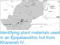 https://sciencythoughts.blogspot.com/2018/08/identifying-plant-materials-used-in.html