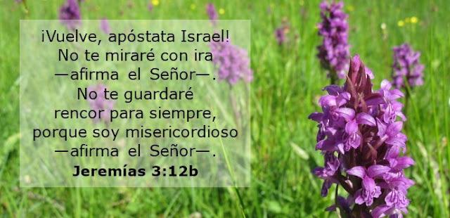 ¡Vuelve, apóstata Israel! No te miraré con ira —afirma el Señor—. No te guardaré rencor para siempre, porque soy misericordioso —afirma el Señor—.