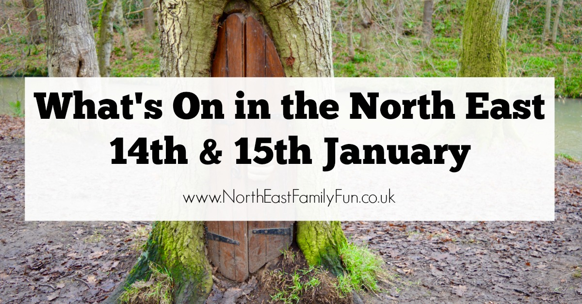 What's On in the North East for Kids | 14th & 15th January