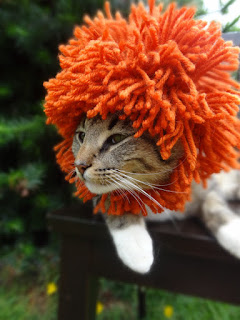 Lion Mane Cat Hat, one of our favorite Halloween hats for cats, it's a whole costume!