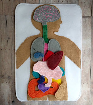 Anatomy Play Set from Shop Orange Blossoms