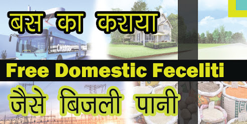 Free domestic facility is in these countries
