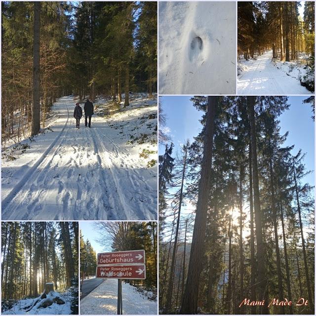Spaziergang im Schnee in der Steiermark - A walk in the snow in Styria