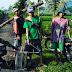 Tingkatkan Produksi Pertanian, TNI-BPP dan Petani Lumajang Lakukan Pengendalian OPT