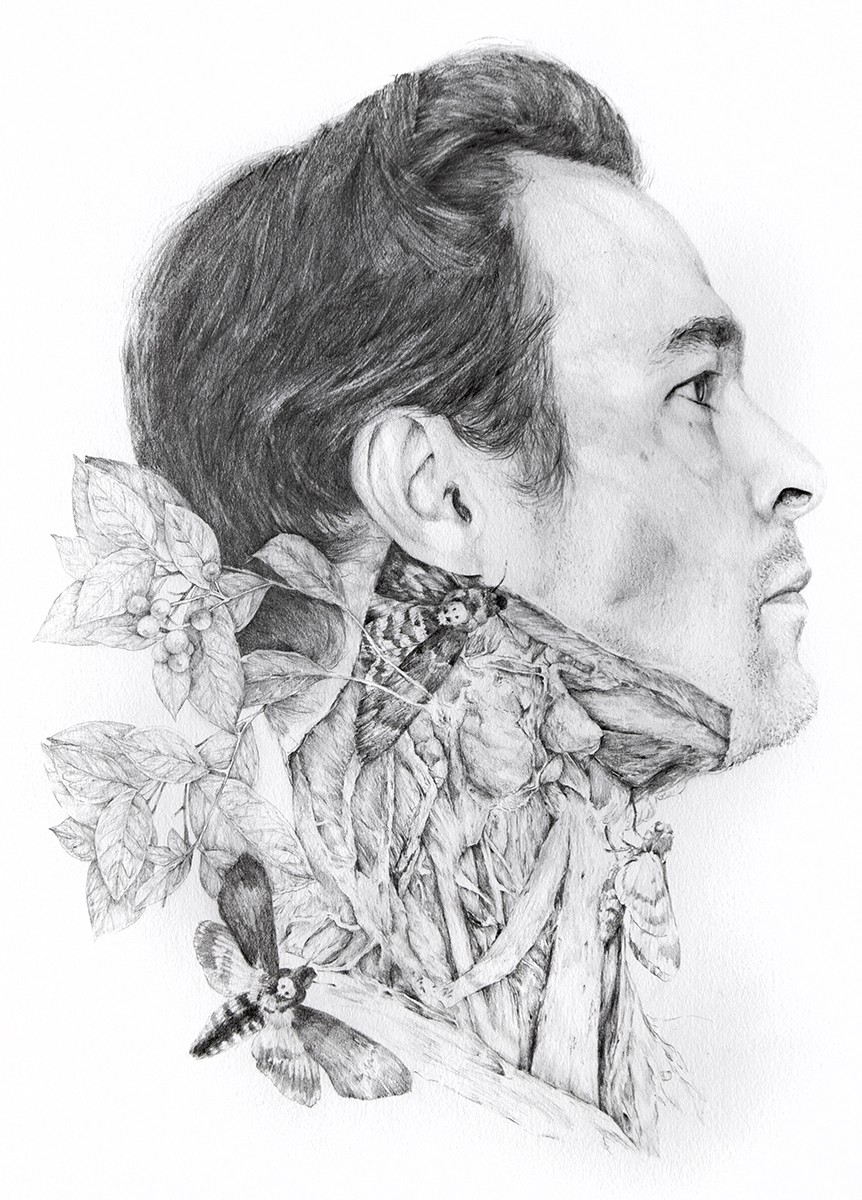 Nunzio Paci - Portrait of Psychotria Viridis
