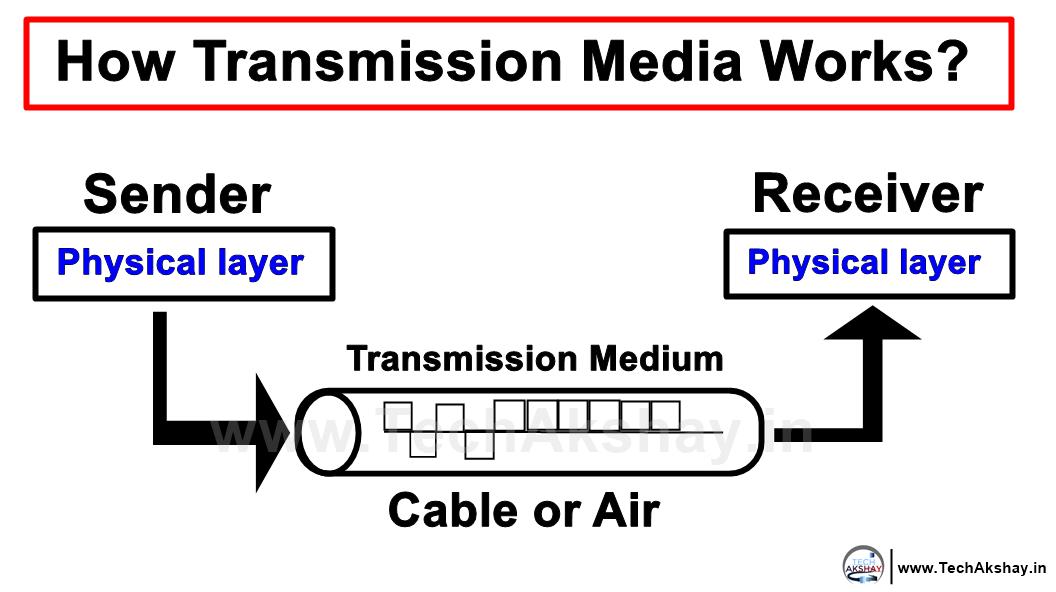 LAN Transmission media
