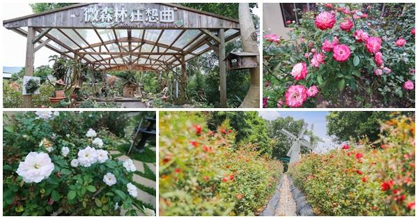 苗栗三義|雅聞香草植物工廠|多肉植物博覽會|微森林狂想曲|數十種玫瑰花|免費參觀
