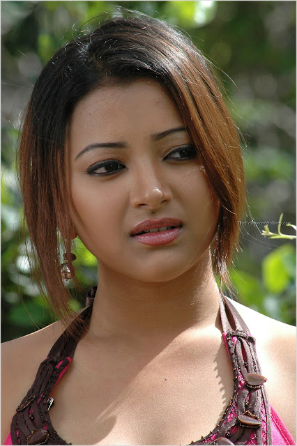 Telugu Cinema Wallpapers Swetha Basu Prasad Telugu Tamil -6894