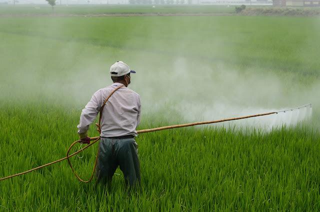 TYPES OF SOIL POLLUTION (মাটি দূষণের ধরন) ,PESTICIDE SPRAY, FARMER