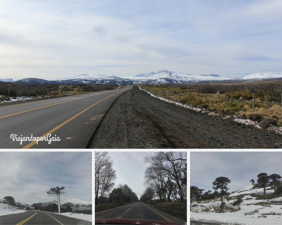 Parte de la ruta 242 (Argentina)