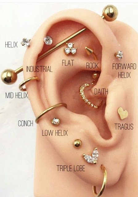 The different classifications of ear piercings.