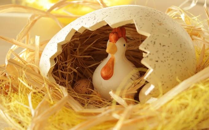 Idéia Para Ovos De Páscoa