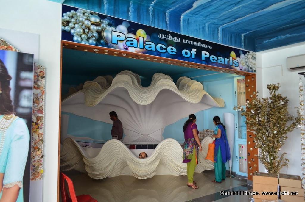 Shell Exhibition Mahabalipuram : Sea shell museum mahabalipuram enidhi india travel