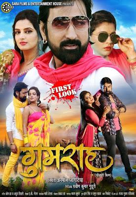 Gumrah Bhojpuri Movie