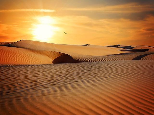 O deserto é útil