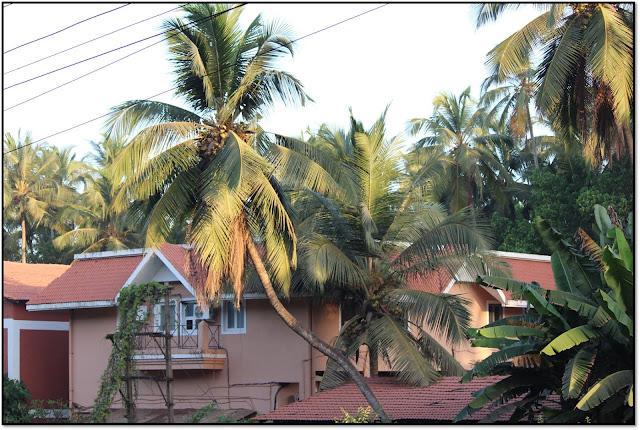 Goa, beauty of goa