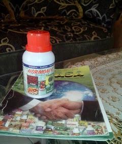 jual pupuk penyubur tanaman, penyubur tanaman cabe, pupuk penyubur, harga pupuk penyubur, pupuk untuk pohon cabe