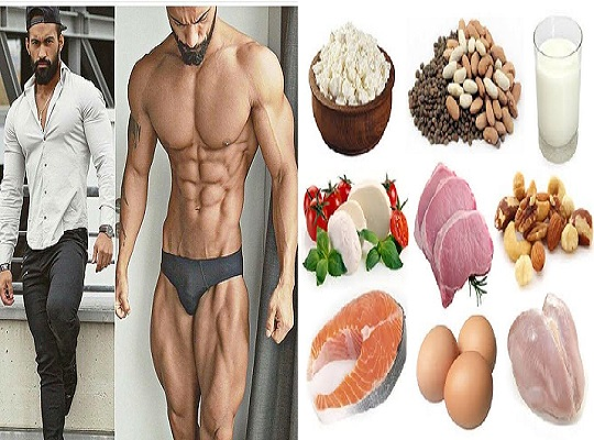 which food contains the most protein?-bodybuilding110