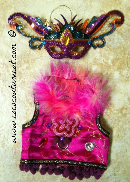 Coco the Cornish Rex cat Mardi Gras costume