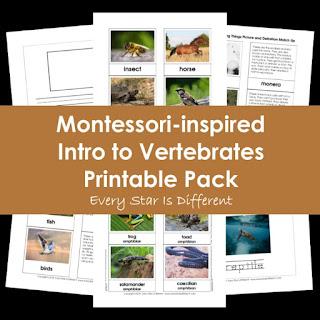 Montessori-inspired Intro to Vertebrates Printable Pack