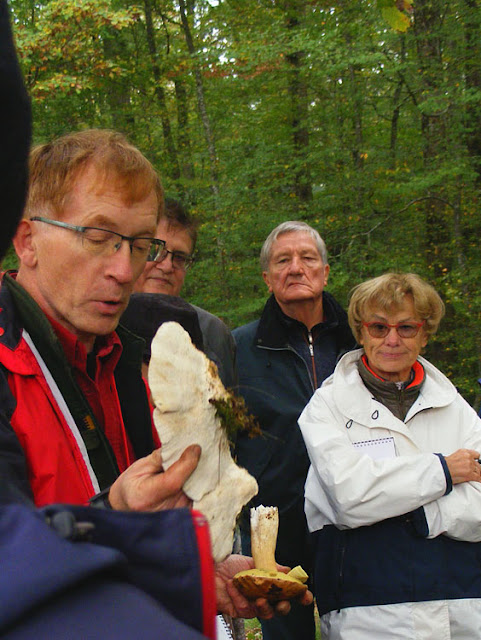 An expert mycologist teaching fungi foragers about species with pores.  Indre et Loire, France. Photographed by Susan Walter. Tour the Loire Valley with a classic car and a private guide.