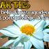 Martes - Un bello día para agradecer a Dios