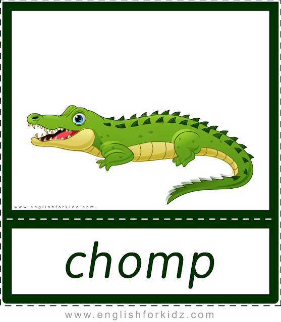 Chomp (crocodile, alligator) - printable animal actions flashcards for English learners