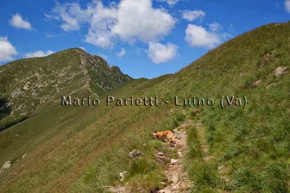 Sentiero per il monte Zeda