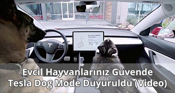 Tesla Dog Mode Duyuruldu