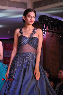 South Indian Celebrities Pos at Love For Handloom Collection Fashion Show  0027.jpg