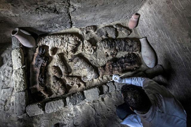 mumi hewan di mesir kuno
