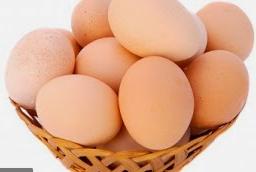 9 Cara Memilih Telur yang Baik dan Segar untuk Dikonsumsi