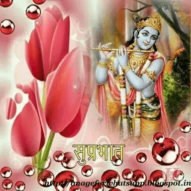 Good Morning Jay Shree Krishna