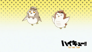 Hellominju.com: ハイキュー!! アニメ   梟谷学園アイキャッチ 第4期 木兎光太郎   赤葦京治   Haikyū!! Commercial Break    Hello Anime !