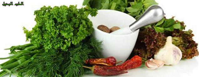 5 أعشاب سحرية لإنقاص الوزن واذابة الدهون