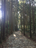 Hakone Old Trail