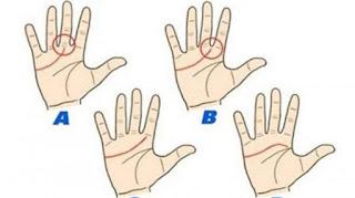 inilah cara membaca kepribadian anda dan orang terdekat dengan melihat garis tangan