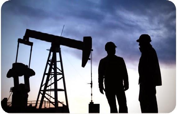 A Degree in Petroleum Engineering Opens Various Career