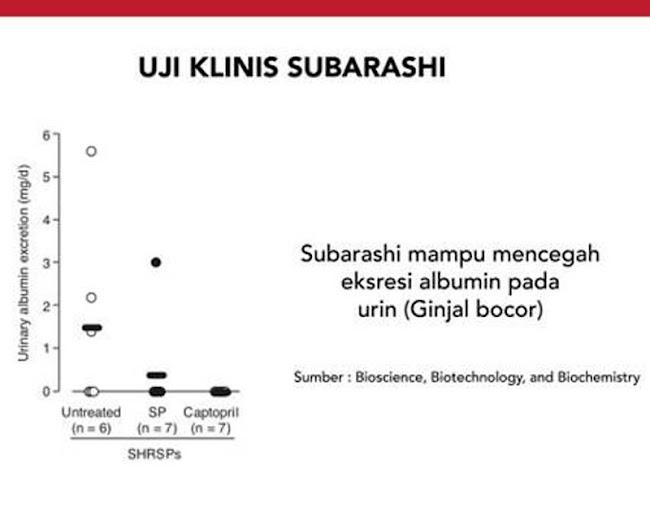 Agen Jual: AFC SOP Subarashi Salmon Ovary Peptide, SOP 100+ Gagal Ginjal, di Lombok Barat