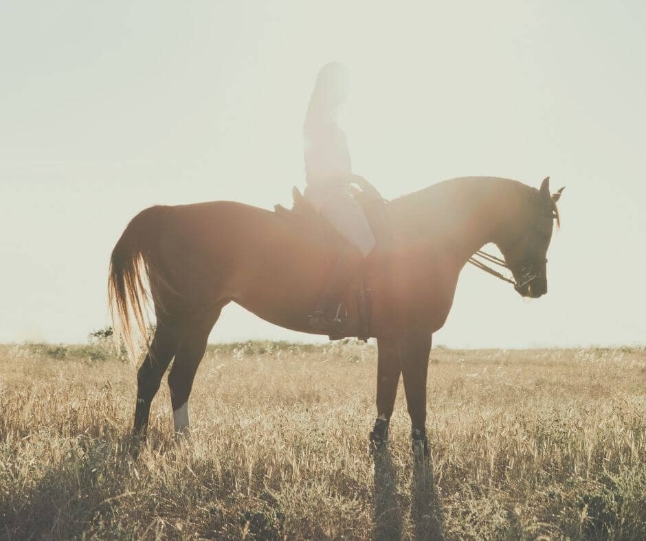 How Horse Riding Can Help You On Your Self-Care Journey | Enjoy a peaceful ride.