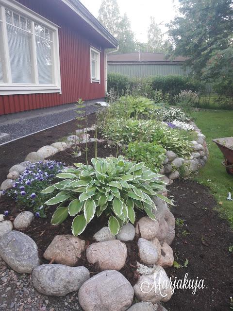 kukkamaa ja uutta nurmikkoa