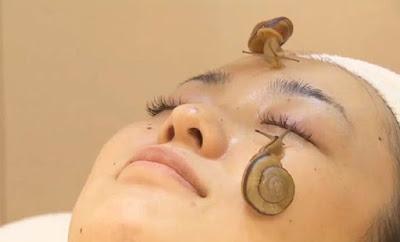 traitement facial avec des escargots