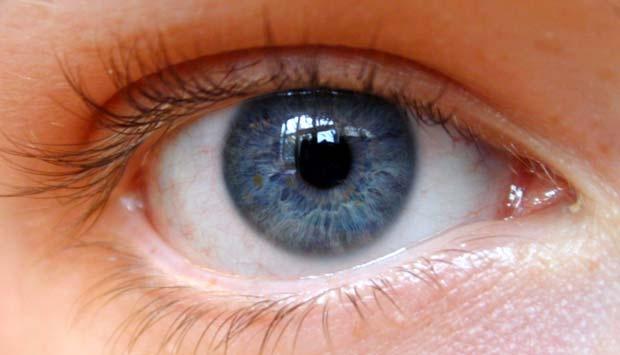 4 Penyakit Mata yang paling Umum Diderita Manusia Mata Sehat