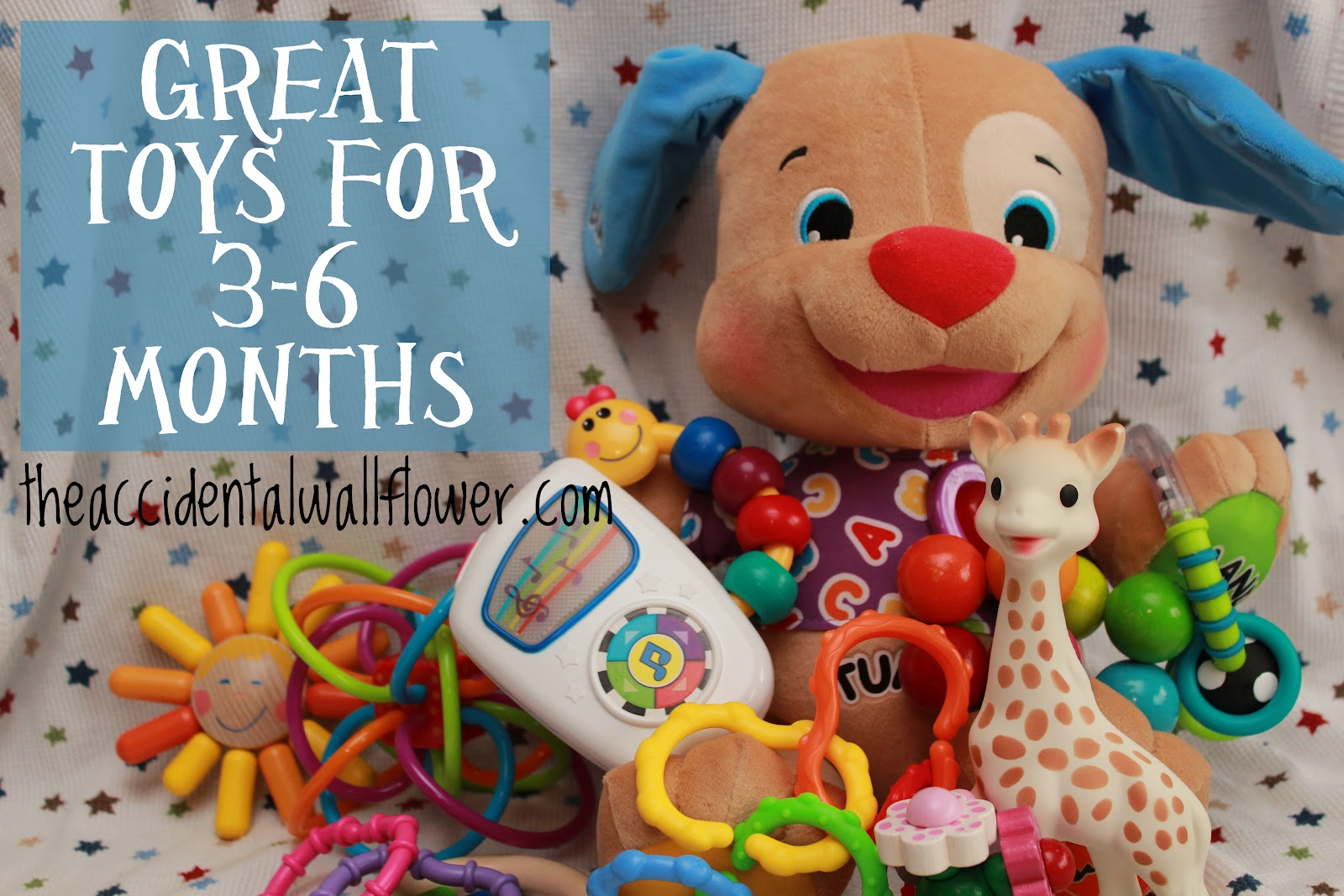 Great Toys For 3 6 Months The Accidental Wallflower