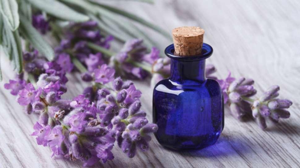 minyak lavender untuk migrain