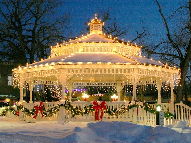 Critter Sitter' Colorado Christmas Scenes